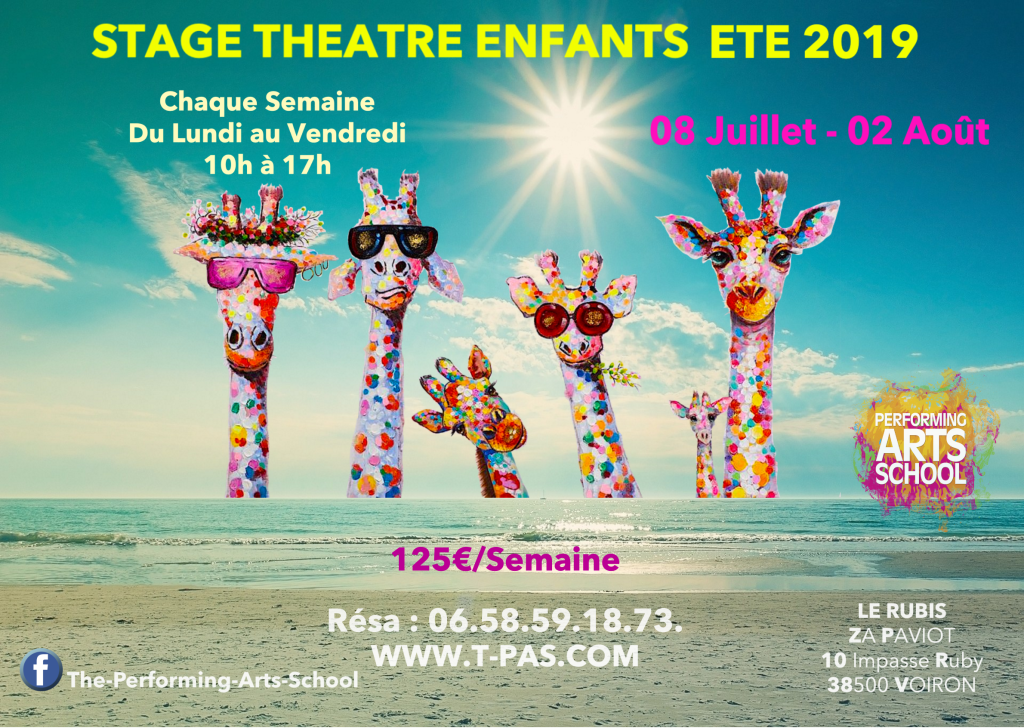 STAGE ETE 2019